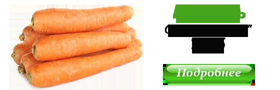 Морковь Маэстро